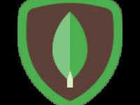 icons8-mongodb-144