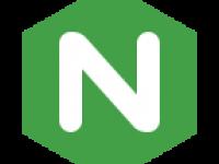 icons8-nginx-144